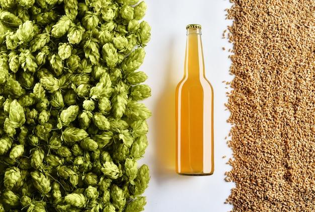 Ongefilterde lichte bierfles op witte achtergrond met hop en tarwe