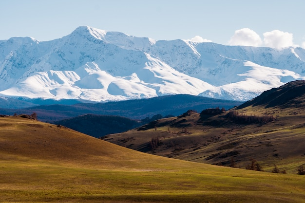 Ongelooflijk landschap van het steppegebied met meren en bomen