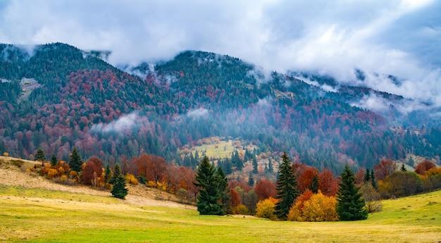 Ongewoon mooie natuur van de karpaten in prachtige heuvels, fantastische lucht van kleurrijke bossen en een klein dorp