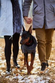 Onherkenbaar jong stel met hond doberman buiten, honden uitlaten in de natuur