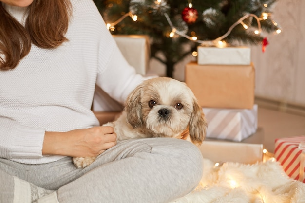 Onherkenbaar vrouw met haar hond bij kerstboom en geschenkdozen, schattige pekingese puppy zittend op de knie van haar eigenaar, vrouw met gekruiste benen zittend op de vloer met haar huisdier.