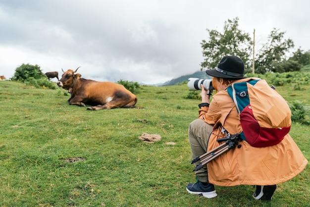 Onherkenbare fotograafvrouw in een oranje jas en zwarte hoed die een foto maakt van een koe in een weiland.
