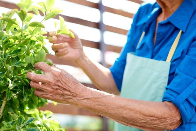 Onherkenbare senior gardener