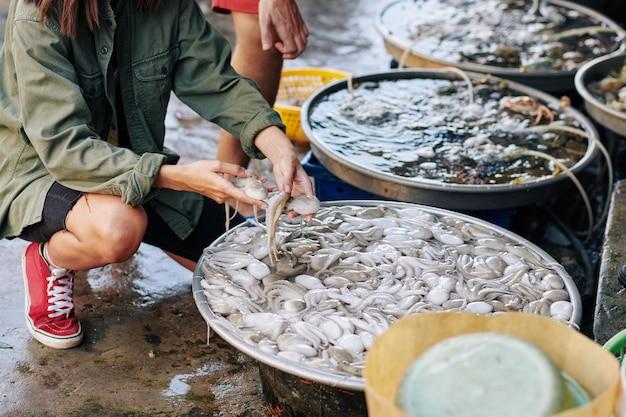 Onherkenbare vrouw die octopussen koopt