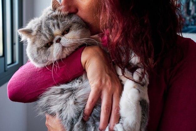 Onherkenbare vrouw knuffelt haar exotische grijze kat