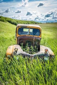Onkruid opgroeien door de lege motorkap van een verlaten antieke vrachtwagen in hoog gras