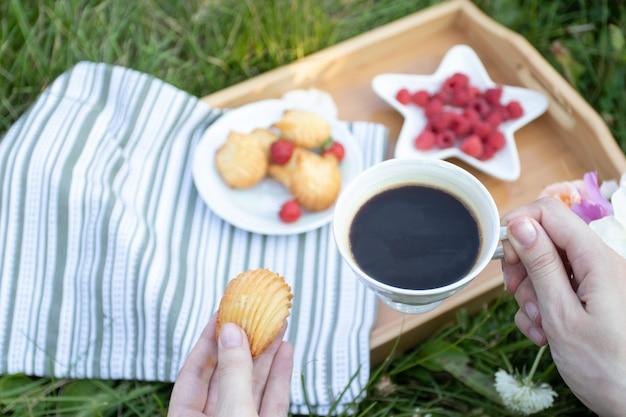 Ontbijt met koekjes, bessen en thee. picknick op het gazon