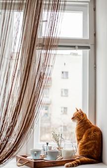 Ontbijtdienblad met een kat