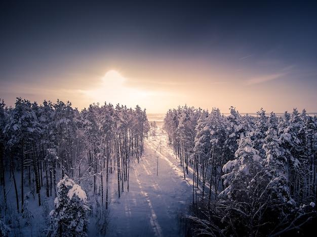 Ontbossing voor hoogspanningsleidingen luchtfoto van drone winterbos en bomen in sneeuw zonnige dag