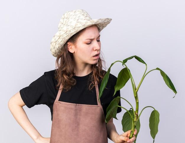 Ontevreden jonge tuinman met een tuinhoed die vasthoudt en kijkt naar plante die de hand op de heup zet, geïsoleerd op een witte muur