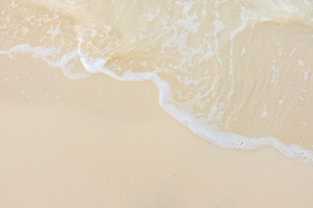 Ontspannen kustlijn blauwe kokosnoot oceaan