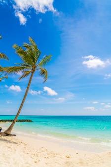 Ontspanning oceaan recreatie toerisme dag
