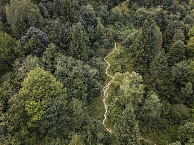 Onverharde weg door bergen en bossen van bovenaf gevangen