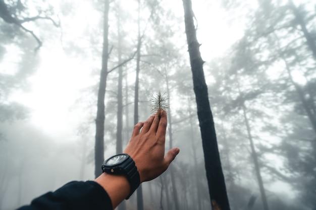 Onverharde weg in de mist en regen tropisch woud