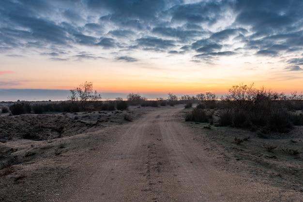 Onverharde weg in de wildernis