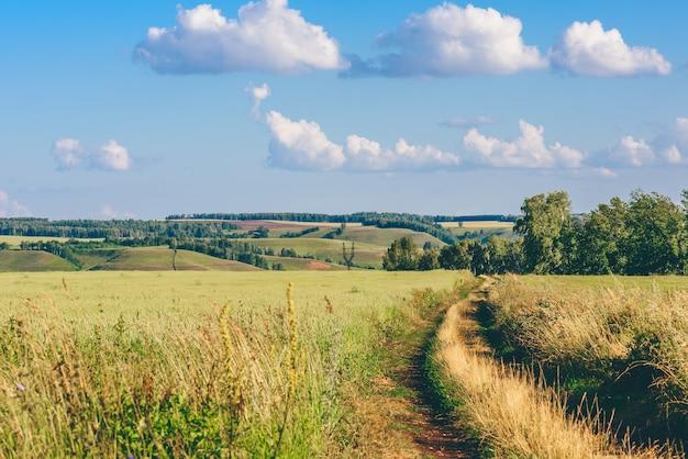 Onverharde weg in groene veld op een zonnige dag. heuvels op de achtergrond.
