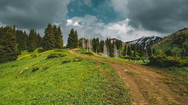 Onverharde weg langs de rand in de bergen tussen het bos onder een bewolkte hemel