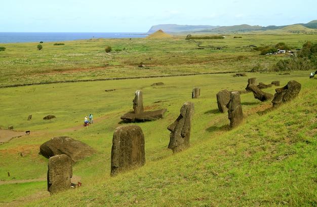 Onvoltooide moai-standbeelden verspreidden zich over rano raraku-vulkaan, paaseiland, chili