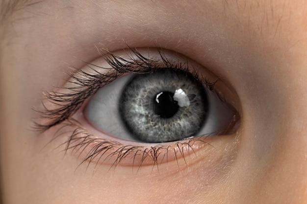 Oog van een kind met grijze ogen close-up. macro foto van een oog
