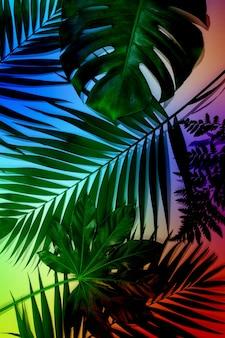 Oogverblindende schoonheid. zomer tropische exotische bladeren geïsoleerd op lichte achtergrond. ontwerp voor uitnodigingskaarten, flyers. abstracte ontwerpsjablonen voor posters, covers, wallpapers met copyspace voor tekst.