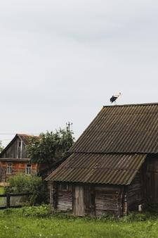 Ooievaar op het dak van een houten huis in het dorp