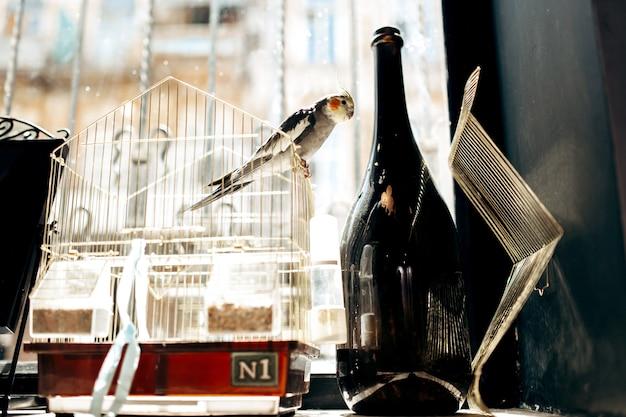 Op de vensterbank staat een open kooi met een papegaai en een zwarte fles.