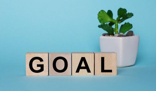 Op een blauwe muur, op houten blokjes bij een plant in een pot staat goal geschreven