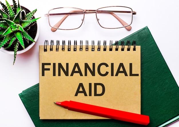 Op een lichte ondergrond een bril met gouden montuur, een bloem in een pot, een groen notitieboekje, een rode pen en een bruin notitieboekje met de tekst financile hulp. bedrijfsconcept