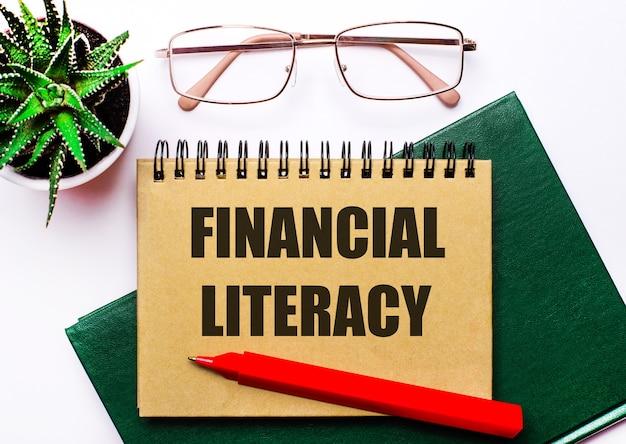 Op een lichte ondergrond een bril met gouden montuur, een bloem in een pot, een groen notitieboekje, een rode pen en een bruin notitieboekje met de tekst financile literacy. bedrijfsconcept