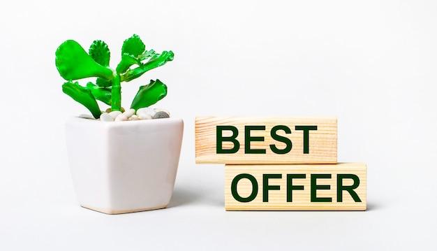 Op een lichte ondergrond een plant in een pot en twee houten blokken met de tekst best offer