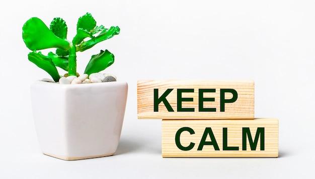 Op een lichte ondergrond een plant in een pot en twee houten blokken met de tekst keep calm