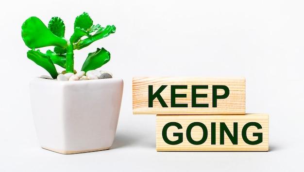 Op een lichte ondergrond een plant in een pot en twee houten blokken met de tekst keep going