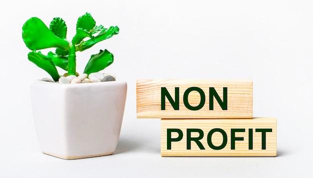 Op een lichte ondergrond een plant in een pot en twee houten blokken met de tekst non profit