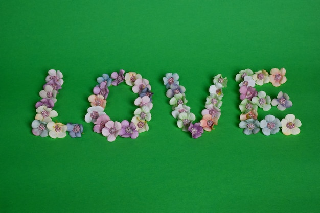 Op een schone groene achtergrond is het woord love bekleed met veelkleurige bloemen in grote letters