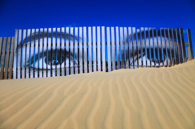 Op elkaar gelegen ogen op de planken van een duin van het strand van cortadura, cadiz, spanje