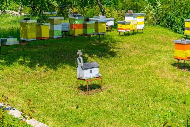 Op het grondgebied van het klooster van moraca staat een bijenkorf