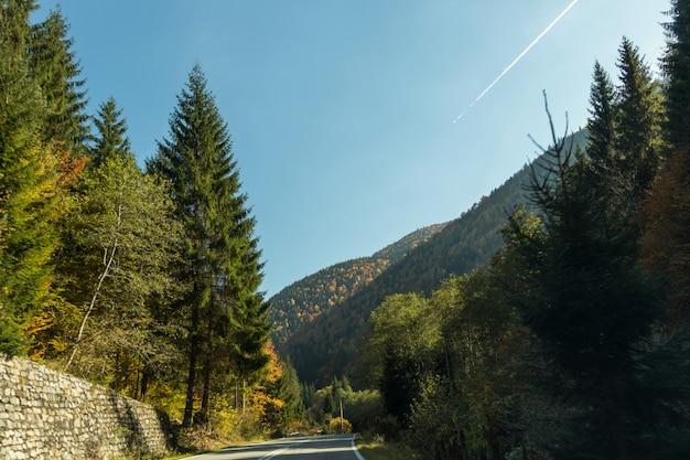 Op weg naar de natuur