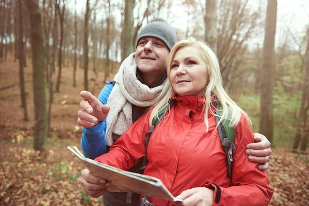 Op zoek naar het pad in het bos