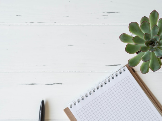Open blanco gecontroleerd notitieboekje, zwarte pen en succulent op witte houten achtergrond.