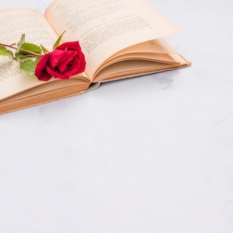 Open boek en rode roos