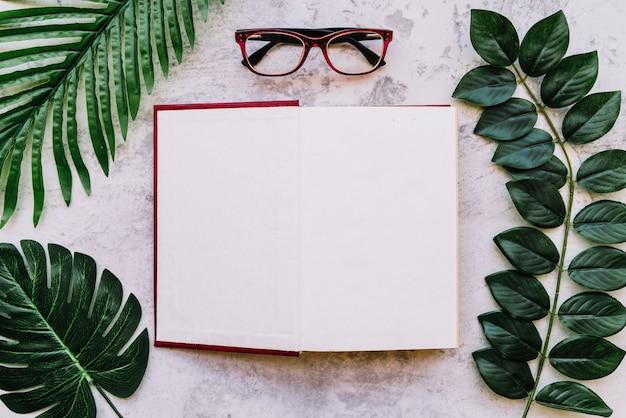 Open boek met bladeren en glazen