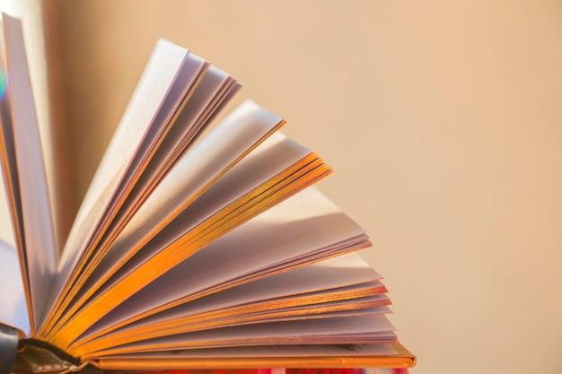 Open boek met gouden pagina's, in het zonlicht