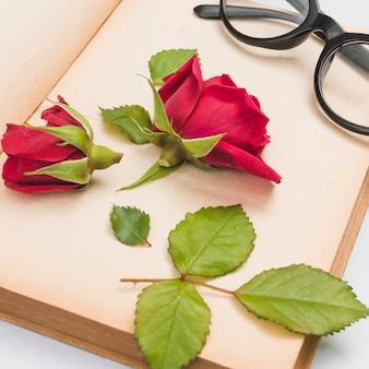 Open boek, roos en bril