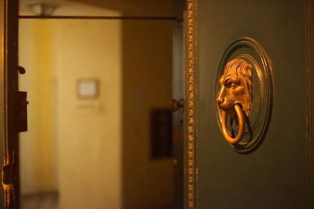Open deur en leeuwenkop