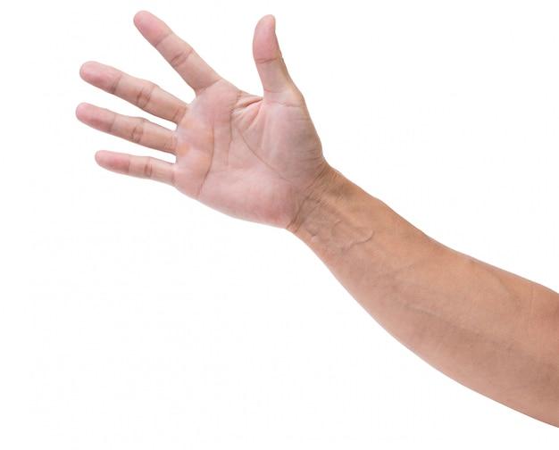 Open hand geïsoleerd
