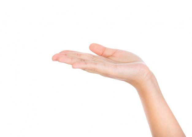 Open hand op een witte achtergrond