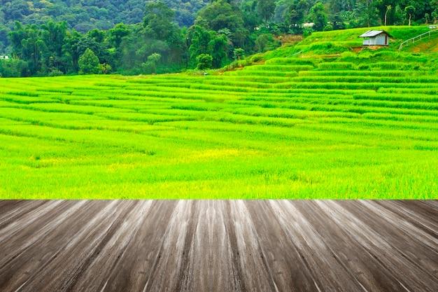 Open houten terras met uitzicht op velden en rijst in thailand