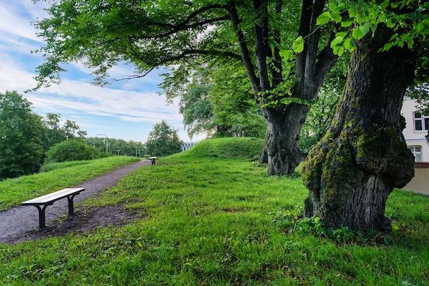 Openbaar park met grote bomen en banken om te zitten en te rusten.