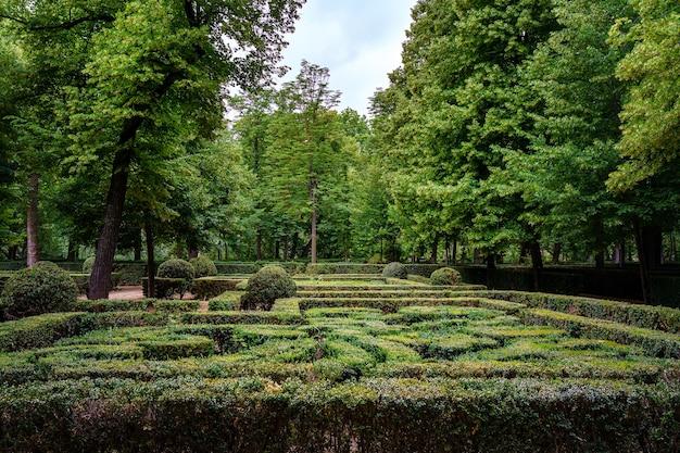 Openbare tuin met heggen die een doolhof van gesnoeide struiken vormen Premium Foto
