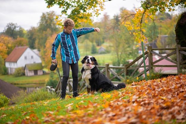 Openluchtportret van jongen met berner sennenhond. vriendschap van tiener met huisdier, jongen wandelen in herfst park